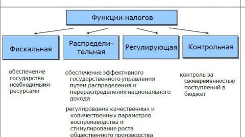 Состоялось открытие группы по курсу ДипНРФ